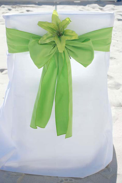 Lime-Green-with-Green-Lily