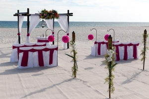 Big Day Weddings Magenta 2