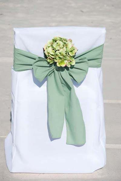 Celadon with Green Hydrangea