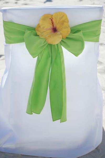 Lime Green with Yellow Hibiscus