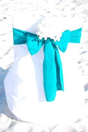 Teal with White Hydrangea