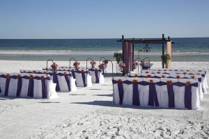 Dream Beach Wedding Orange Beach Alabama