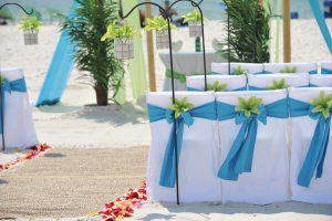 Big Day Wedding Ocean Blue and Lime 14