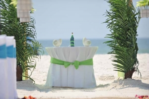 Big Day Wedding Ocean Blue and Lime 16