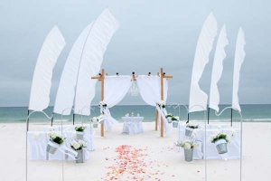 Big-Day-Beach-Wedding-Princess-1