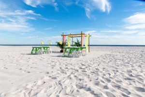 Gulf Shores Seaside Wedding 1