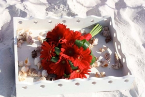 Beach Wedding Red Gerbera Daisy Bouquet Big Day Weddings
