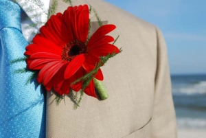 Beach Wedding Red Gerbera Daisy Bouttonniere Big Day Weddings