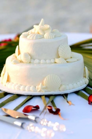 Big Day Orange Beach Wedding Cake 14