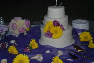 Big Day Orange Beach Wedding Cake 8
