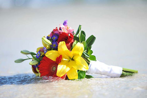 Big Day Weddings Affordable Beach Weddings